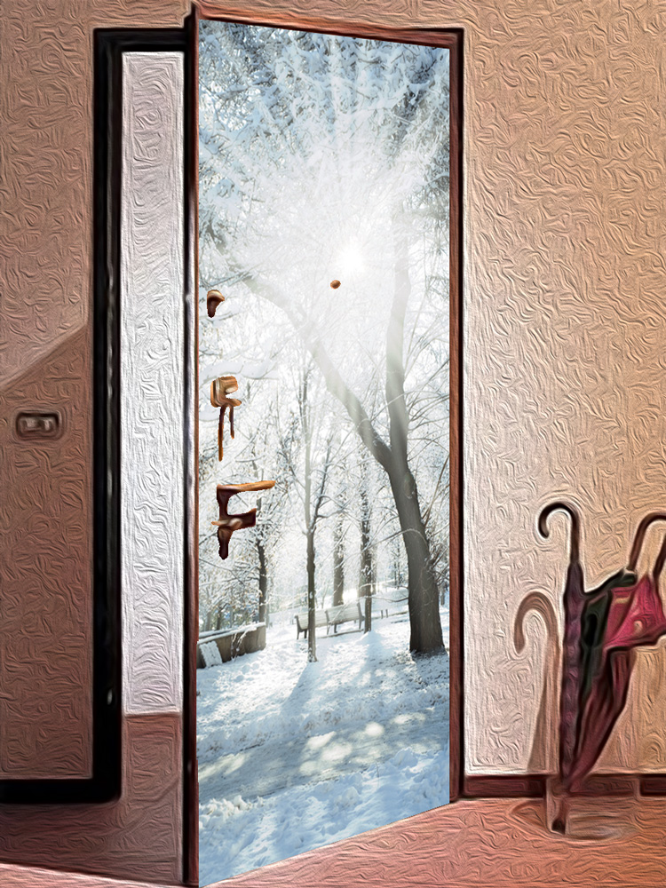 Виниловая наклейка на дверь - Зимний парк