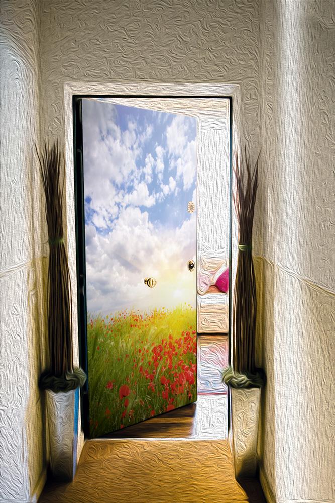 Виниловый стикер на дверь - Маки