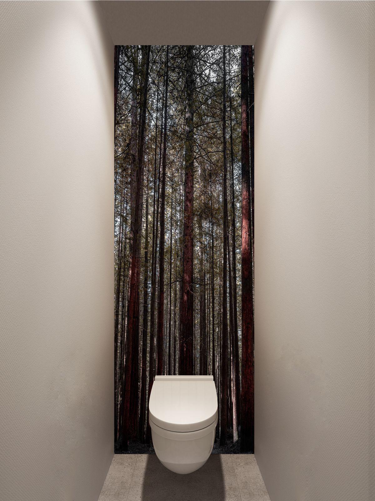 Фотообои в туалет - Корабельные сосны купить в магазине Интерьерные наклейки