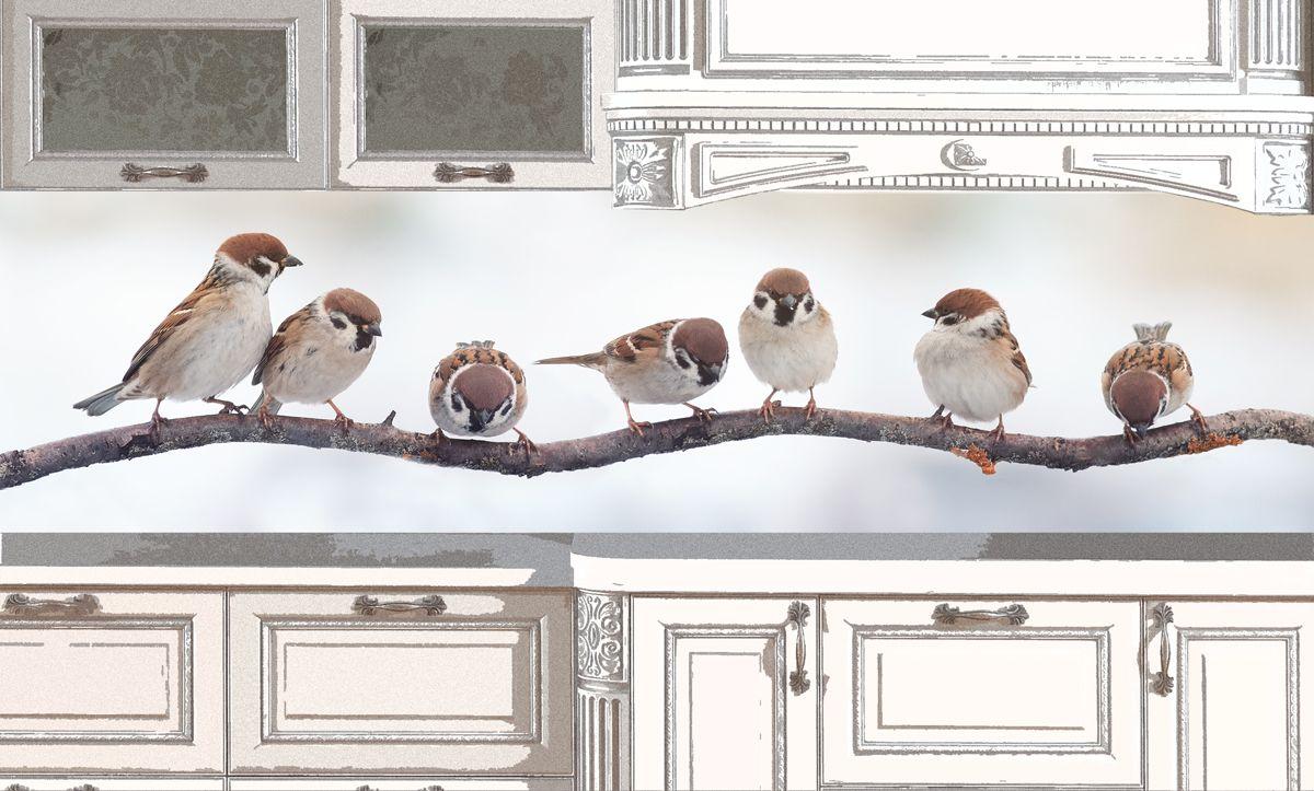 Фартук кухни - Воробьи купить в магазине Интерьерные наклейки